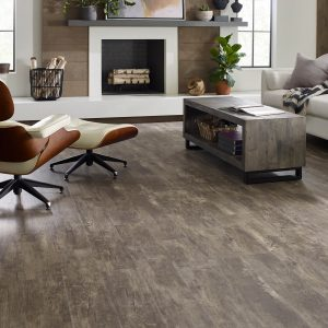 Paramount Plus Jade Oak Family room | Kopp's Carpet & Decorating