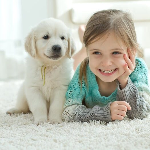 Kid and dog on carpet | Kopp's Carpet & Decorating