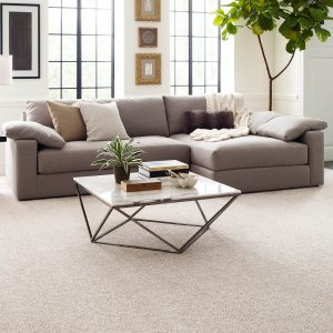 Perfect carpet in living rooms | Kopp's Carpet & Decorating