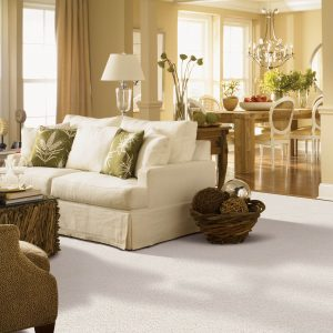 Gentle Approach of carpet | Kopp's Carpet & Decorating