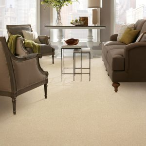 Carpet in living room | Kopp's Carpet & Decorating