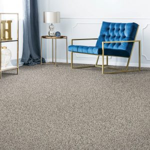 Remarkable carpet Vision | Kopp's Carpet & Decorating