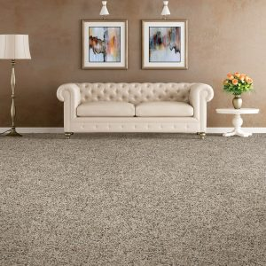 Soft distinction carpet flooring | Kopp's Carpet & Decorating