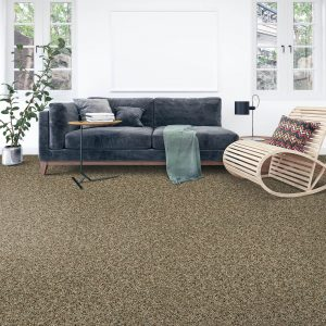 Soft intrigue carpet floor | Kopp's Carpet & Decorating