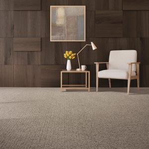 Stylish Edge of the living room | Kopp's Carpet & Decorating